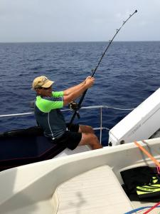 Blackfin tuna hooked up between Conception and Cat