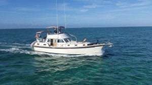 Turtle-on-the-Sea-of-Abaco-from-front-quarter